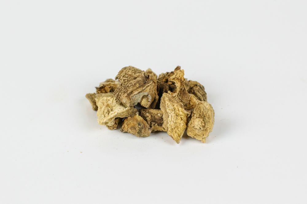 Αρπαγόφυτο ρίζα κομμένη