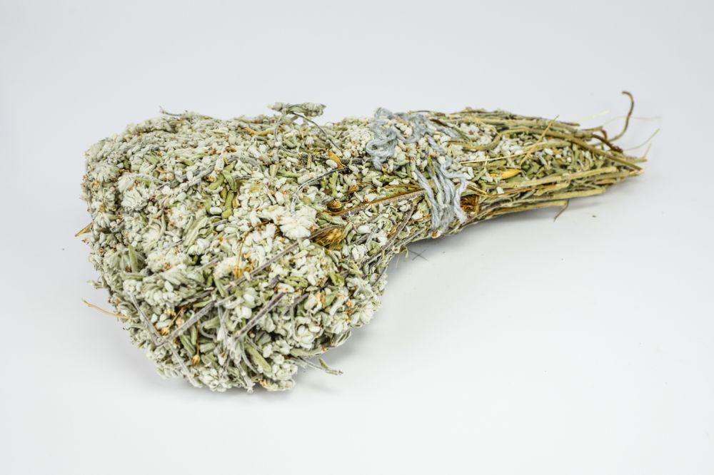 Λαγοκοιμηθιά - Τεύκριο φυτό μάτσο