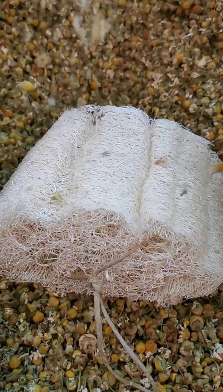 Λούφα με σχοινάκι